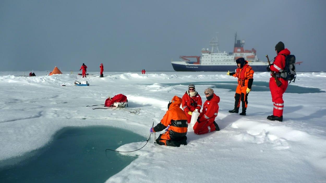 arctique-contamination-etude-plastique